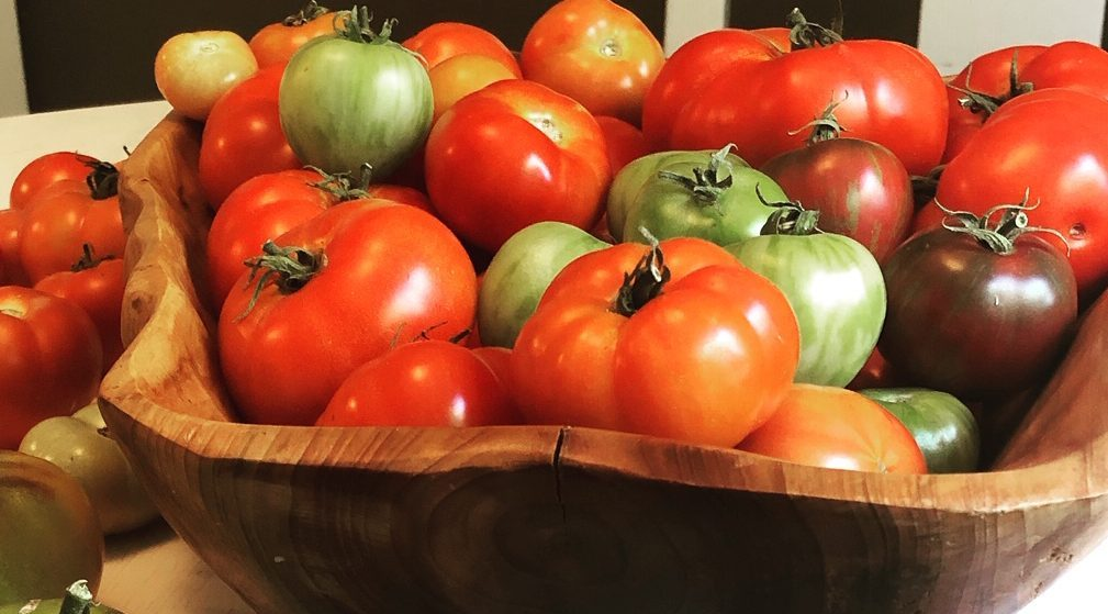 Why Farming? It all began with some tomatoes